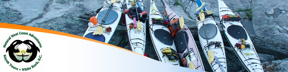 Photo of rental kayaks waiting to be paddled